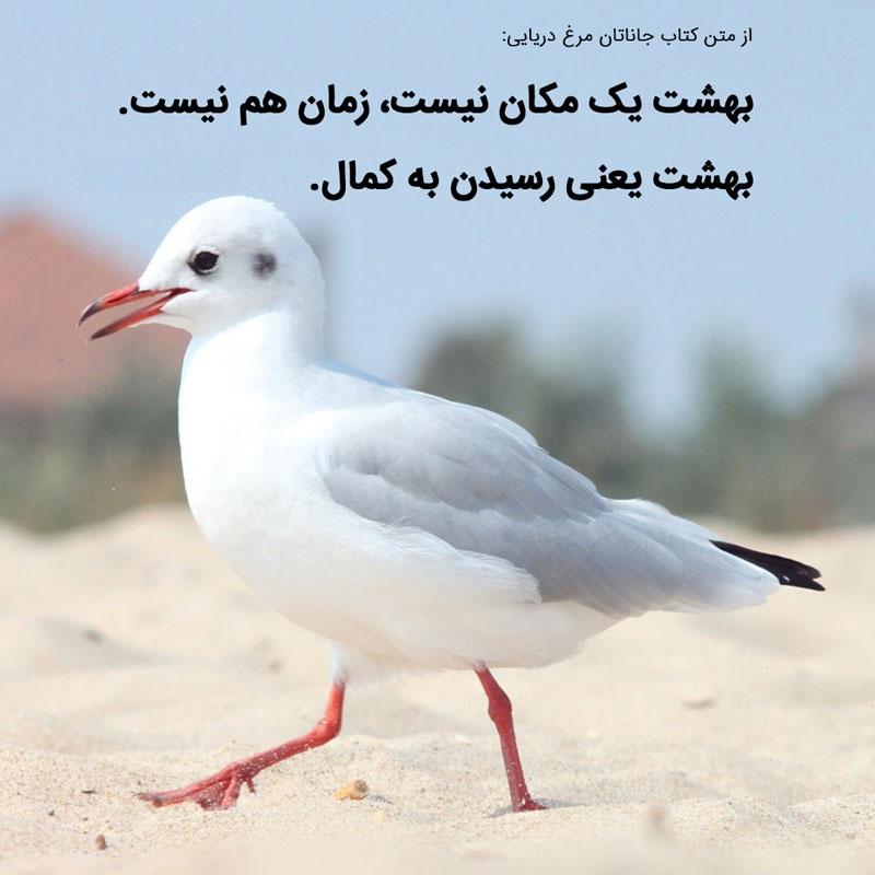 کتاب صوتی جاناتان مرغ دریایی
